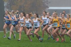 West Chester Henderson's Jenna Milhern,center,(bib 6626) led from start to finish in Ches-Mont Cross County Championships at Unionville High School Wednesday. Milhern finished in a time of 188:55.