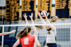 Unionville's Genna Weeber (28) and Ashlyn Wiswall. (Nate Heckenberger - For MediaNews Group)