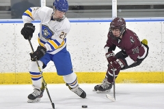 Downingtown West's (29) Chris Perlish carries the puck as Henderson's (75) Mike Liberace defends in the second period.